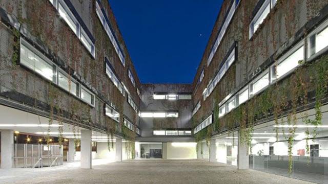 Polo III Universidad de Coimbra