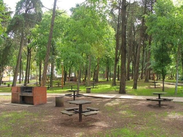 Picnics en los parques de Lisboa